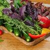Фото к позиции меню Овощное плато