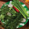 Фото к позиции меню Зеленая тарелка