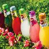Фото к позиции меню Греческие напитки Epsa